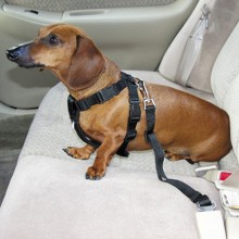 Adjustable Dog Pet Harness Car Seat Safety Belt Clip